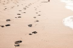 Footprints in wet sand on Margate ocean beach, South Africa. Blurred barefoot legs in the background in the distance. Vacation or holiday concept Royalty Free Stock Photos