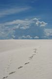 Footprints on white sand dunes. National park stock image
