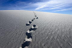 Footprints on White Sands National Monument Stock Photos