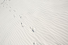 Footprints in White Sandy Beach Royalty Free Stock Photos