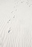 Footprints in White Sandy Beach Royalty Free Stock Images