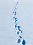 Footprints winding in fresh white snow. Royalty Free Stock Photos