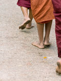 Foots of ascetic Buddhist monk walking Stock Image