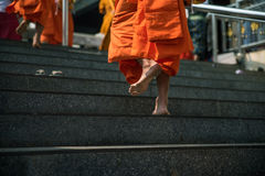 Foots path of monk. Stock Photos