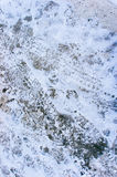 Foots and tire prints on the snow. Stock Photo
