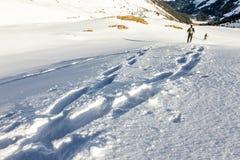 Footsprints en nieve Dos personas que corren cuesta abajo a través de nieve profunda con los snoeshoes imágenes de archivo libres de regalías