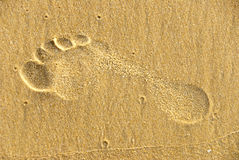 Footstep. A footstep in the sand Royalty Free Stock Image