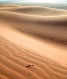 Footstep on the arid sand dunes Stock Images