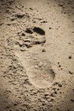 Footstep on the beach sand. A footstep on the sand at the beach Stock Image