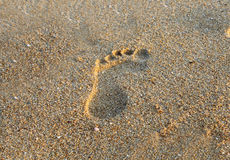 Footstep on beach sand. And reflection of sunlight Royalty Free Stock Images
