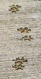Footstep dog Royalty Free Stock Image
