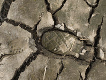 Footstep in dried soil Royalty Free Stock Photo
