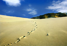 Footstep in the dunes Royalty Free Stock Images