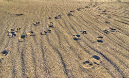 Footstep Royalty Free Stock Photo