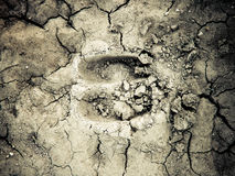 Footstep hoofed animal on cracked ground. Dried in footmark of a hooflike animal on dry soil Royalty Free Stock Images