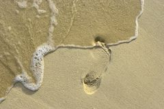 Footstep on the sand 5. Right footstep on the coral sandy beach stock images
