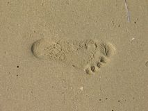 Footstep in sand. Beach in Royalty Free Stock Photography