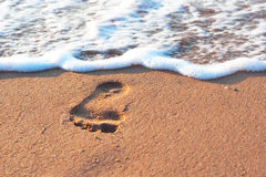 Footstep on the sand and sea spume Stock Image