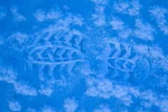 Footstep on snow Royalty Free Stock Photo