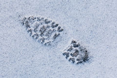 Footstep on snow. Close up of footstep on snow Stock Photos