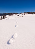 Footstep trails at snow by sunny day Royalty Free Stock Photo