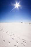 Footstep trails at snow by sunny day Stock Images