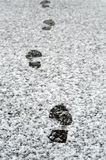 Footsteps Royalty Free Stock Photos