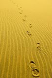 Footsteps royalty free stock photo