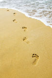 Footsteps Stock Photography