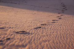Footsteps stock photos