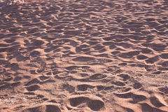 Footsteps in the atacama desert going in all directions Royalty Free Stock Image