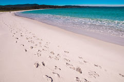 Footsteps at Bay of Fires beach, Tasmania. A track of footsteps leads along Binalong Bay beach at Bay of Fires, Tasmania which is world-famous for it`s beautiful Stock Photos