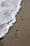 Footsteps on the beach Stock Images