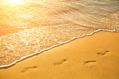Footsteps on the beach Royalty Free Stock Image