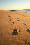 Footsteps on the beach. Graphic colorful landscape showing footsteps on the beach in the early morning light. Sunrise on the east coast USA Royalty Free Stock Photos