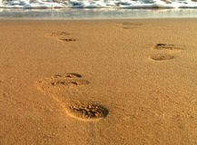Footsteps on beach Royalty Free Stock Images