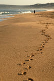 Footsteps in the beach Stock Photos