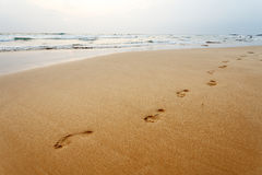 Footsteps on the beach, background Stock Photography