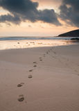 Footsteps on the beach Royalty Free Stock Images