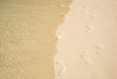 Footsteps at the beach of Phi Phi island Stock Photos