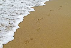 Footsteps on beach shoreline Stock Photos