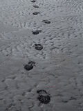 Footsteps in black sand Stock Photo