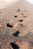 Footsteps on the black sand Stock Photos