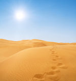 Footsteps in desert Royalty Free Stock Images
