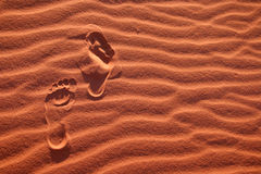 Footsteps in the desert Stock Image
