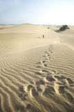 Footsteps at the desert Royalty Free Stock Photography