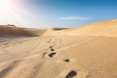 Footsteps in the desert of Qatar. On a sunny day Stock Photos