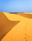 Footsteps in desert Royalty Free Stock Image