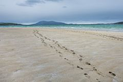 Footsteps disappearing into the distance on the sandy beach royalty free stock photography