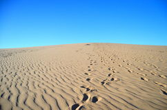 Footsteps on the dune Royalty Free Stock Photography